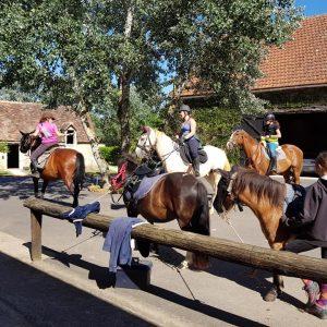 chevaux-poneys ENLO 2019