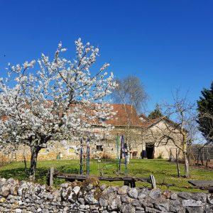 jardin-grand-gite 2019